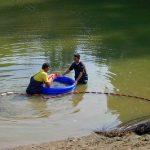 鯉・池の管理・メンテナンス